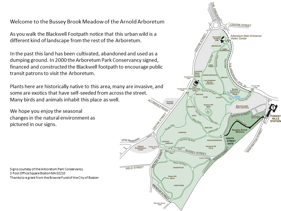 Bussey Brook Meadow Map