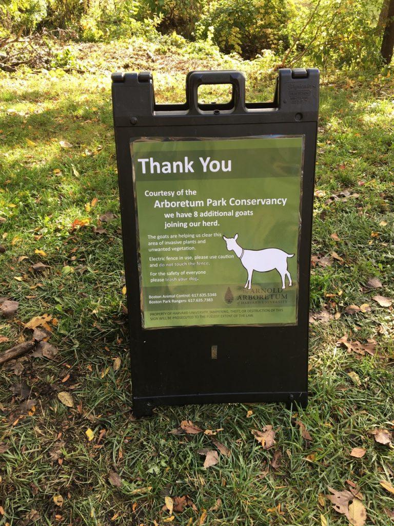 Goat Sign Arnold Arboretum