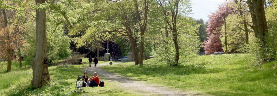 Enjoy the Bussey Brook Meadow
